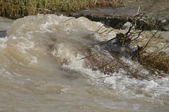 la fuerza del agua en el barranco de Maspalomas