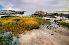 Break the Quiet (revised) (floralgal) Tags: seascape landscape sand seagrass longislandsound rockycoast ryenewyork sandandsurf westchestercountynewyork miltonpoint ryenewyorkseascape