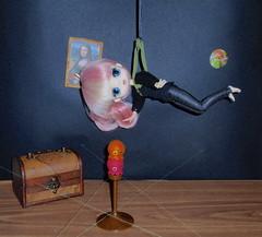 Concurso foro Pullip Spain (❀> Lily <❀) Tags: for spain doll lily treasure foro clear lan thief pullip miss pure conquest cocotte sato neemo rewigged byul mizars takochu