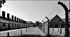 Polónia – Auschwitz – Birkenau - 27 de Janeiro de 1945 - 70 Anos depois da libertação do inferno que nunca deveria ter existido e que jamais deverá ser esquecido. Esta é a minha humilde homenagem a todas as vítimas, é por elas que escrevo…