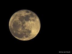 Moon (by_irma) Tags: moon nature dark licht darkness nightshot natuur lightning donker nachtfotografie maan duisternis