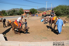 KS4A5290 (Actuality_Media) Tags: morocco maroc camels excursion studyabroad actualitymedia documentaryoutreach filmabroad