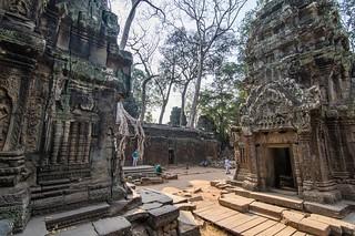 angkor - cambodge 2016 105