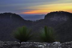 Windy Twins (edwinemmerick) Tags: sunset nature australia bluemountains nsw