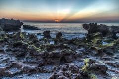 Dawn at Coral Cove (aka Buddy) Tags: ocean coral sunrise dawn spring cove atlantic og fl hdr 2016 tequesta
