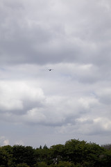 A SMALL AIRPORT, SOME PARKS AND CLOUDS - XXXIII (Jussi Salmiakkinen (JUNJI SUDA)) Tags: park wood autumn sky cloud japan airplane landscape tokyo airport cityscape aircraft     chofu