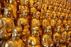 Shanghai, Longhua temple, 1000 golden arhat hall (blauepics) Tags: china city building architecture temple golden shanghai buddhist religion statues monks u stadt architektur statuen gebude tempel goldene disciples longhua buddhismus arhats schanghai