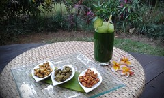 Fivelements, Bali 2015 (scinta1) Tags: bali food nature river indonesia restaurant healthy raw room awesome relaxing bamboo excellent tropical dining healing spa bungalow accomodation 2015 sakti fivelements
