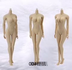 JIAOU Doll JD-004 Female Seamless Body in Pale_Large Bust - 02 (Lord Dragon ) Tags: hot female toys actionfigure doll seamless onesixthscale 16scale 12inscale jiaou