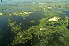 15-09-20 Ruta Okavango Botswana (115) R01 (Nikobo3) Tags: travel parque paisajes naturaleza color canon ngc delta unesco viajes botswana okavango vuelo twop frica vidasalvaje g7x omot deltadelokavango flickrtravelaward canong7x nikobo josgarcacobo todosloscomentarios