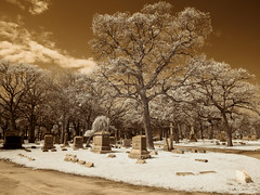 Spring in a Graveyard (Adventures in Infrared) (Torsten Reimer) Tags: trees sky friedhof usa chicago cemetery graveyard grass clouds us illinois spring unitedstates path unitedstatesofamerica wolken graves infrared northamerica gravestones rosehillcemetery grabsteine infrarot olympusepl5