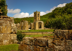 Mount Grace Priory(3) (S.R.Murphy) Tags: building architecture landscape ancient ruins stonework ngc nationaltrust northyorkshire englishheritage mountgracepriory may2016 fujix100t