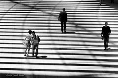 A Line Dance (CVerwaal) Tags: nyc blackandwhite usa ny newyork architecture shadows batteryparkcity santiagocalatrava sonyrx100iii
