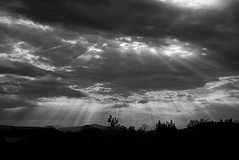 2016_0525Sun-Rays0001 (maineman152 (Lou)) Tags: sky blackandwhite bw nature skyscape landscape spring maine may rays sunrays sunbeams crepuscularrays skyview bwphoto naturephotography godrays skyscene blackandwhitephoto landscapephotography naturephoto skydrama landscapephoto