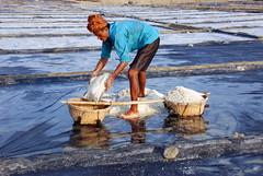 Salt produce in Cox's Bazar (akhlas_viewfinder) Tags: asian asia bd bangladesh coxsbazar saltfield teknaf coxsbazar saltfarmer saltfarming coastalareaofbangladesh saltproduce