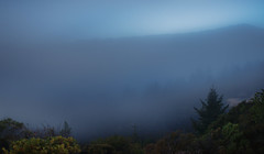 Dusk and fog on Mt. Tamilpais. (Craig Hudson Photography) Tags: usa nature horizontal landscape unitedstates dusk mttam marinheadlands coastalfog tamilpais