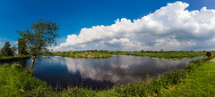Three Way Split (Glenn Cartmill) Tags: uk blue ireland sky tree nature grass sunshine clouds reflections river outside afternoon unitedkingdom outdoor pano sunday may sunny bluesky panoramic northernireland towpath portadown 2016 riverbann countyarmagh newrycanal rivercusher glenncartmill portadownphotography