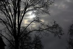 sun cloud tree house (fdfotografie) Tags: silhouette flora outdoor pflanze wolken haus struktur tageslicht dslr ste baum muster zweige textur schattenriss bewlkt farbfoto querformat lichtstimmung d7100 verzweigunen