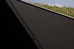 (eduardo.b) Tags: shadow sky grass metal clouds poppies banister blackwall