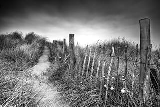 Talacre sand dunes