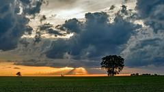 Distant Spotlight (myoldpostcards) Tags: road sunset sky orange sunlight field clouds rural america season landscape illinois spring country farmland prairie sunrays rd goldenhour centralillinois sangamoncounty myoldpostcards vonliski parkskinner