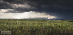 (brett.stakelin) Tags: clouds landscape landscapes colorado denverinternationalairport denver storms frontrange 303 summerstorm milehighcity cloudpr0n