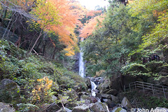 The Approach to Yoro Falls (Japan Australia) Tags: waterfall falls gifu yoro
