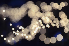 (Casey Lombardo) Tags: light lights blurry focus bokeh multipleexposure tripleexposure lightstrings bokehballs