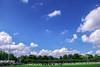 160626-1e Training FC Groningen 16-17-288 (Antoon's Foobar) Tags: training groningen fc haren 1617 fcgroningen sportparkharen