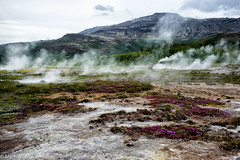 Steaming earth (michael.mu) Tags: leica m240 35mm leicasummicron35mmf20asph leicasummicronm1235mmasph haukadalur iceland fumarole volcanic landscape geysir colorefexpro nordicvisitor