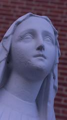 Mary (marcn) Tags: mary nh nashua photowalk newhampshire unitedstates us