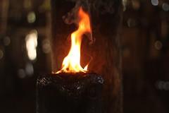 Fire (odontologia_drajessica) Tags: fire tribo