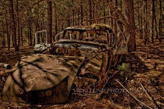 Studebaker Commander (Vicki Lund Photography) Tags: trees abandoned rural vintage landscapes woods nikon rust raw shadows fineart rustic maine newengland rusty naturallight creepy northamerica crusty vacationland eastcoast freelance relic countryroads stumbleupon cumberlandcounty freelancephotographer daysgoneby studebakercommander followthelight maineartist fineartprints travelphotographer nikond90 mainephotographer fineartlandscape mainetrees colorsnatural abandoned~forgotten~old~weathered~ wwwvickilundphotographycom httponfbmevickilundphotographywelcome mainegov vickilund