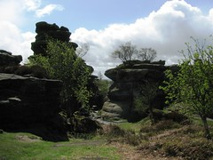 Brimham Rocks (MightySnail) Tags: trees tree spring nationaltrust brimhamrocks gritstone