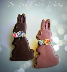Chocolate Bunny Cookies (The Last Course Bakery) Tags: roses rabbit bunny easter nc cookie charlotte chocolate decorated
