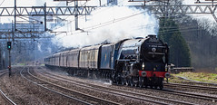 60163 Tornado Rugeley The Cathedrals Express Euston-Holyhead 20-04-13 Rob Walton (Mirrorfinish) Tags: train steam tornado rugeley 60163 thecathedralsexpress rugeleytrentvalley