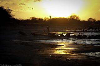 Sonnenaufgang Fehmarn