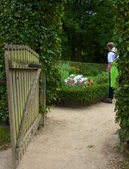 Westfalische Wilhelms-Universitat Botanisher Garten, Munster Germany (3) (John Strung) Tags: flowers germany garden botanical deutschland mnster munster strung johnstrung