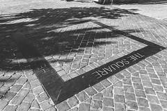 The Square (Imperatore Geoffrey) Tags: city bw white black square town nikon belgium belgique le ville carr lige d3100