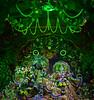 Krishna  Janmaslami (Peter Jennings 20 Million+ views) Tags: new love hare grace divine auckland zealand krishna krsna maha swami riverhead iskcon abhisek janmaslami pradhpada