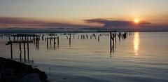 Pier 64 Sunrise 9-2013 (daver6sf@yahoo.com) Tags: fog sunrise sanfranciscobay portofsanfrancisco eastbayhills pier64 orangesunrise oldpiles e1855mmf3556oss fogonthebay