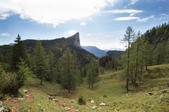 Life is like ... (cheesy42) Tags: life mountain berg quote leben zitat scavenger6