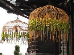 Hoogstraten in groenten en bloemen (~~Nelly~~) Tags: belgium belgique belgi bloemen hoogstraten