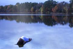 The Ripples Put You To Sleep (xBellanottephotography) Tags: lake fall nature water beautiful photography pond sleep conceptual sarahannloreth