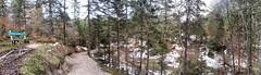 Schneewald-Pano (bergtrend) Tags: alps austria sterreich oberbayern berge alpine alpen wandern garmisch garmischpartenkirchen wanderung karwendel mittenwald bergwandern kranzberg lautersee ferchensee hoherkranzberg schanitz