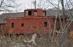 Austintown, Ohio (Bob McGilvray Jr.) Tags: railroad up train tracks caboose ple austintownohio