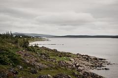 Shore (WhiteFlowersFade) Tags: voyage travel canada rock newfoundland landscape coast nikon labrador north roadtrip paysage nord roche cartwright tnl terreneuve ctes d7k d7000