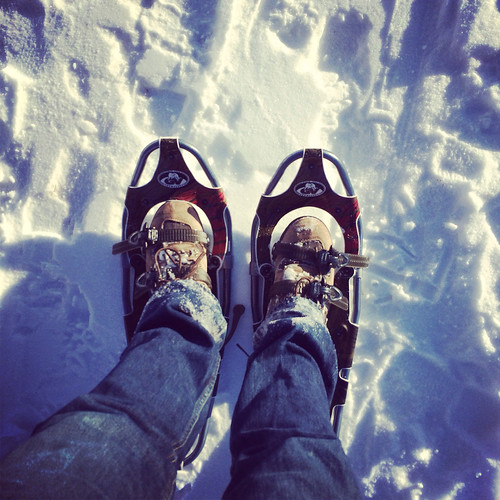 winter snow snowshoes