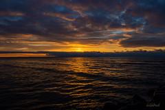 Presqu'ile Sunrise (annigabud) Tags: sunrise lakeontario presquileprovincialpark