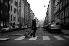 Crossing (dFederico) Tags: leica winter blackandwhite bw woman white black 50mm noir crossing stockholm summicron monochrom bianco blanc nero m9 dfederico danielfedericocom
